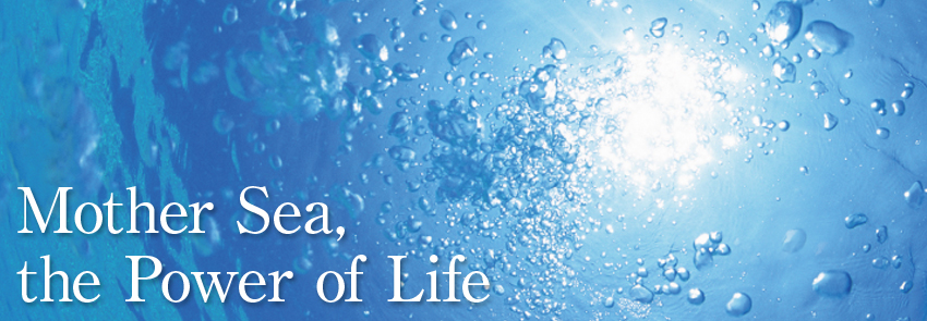 Mother Sea,the Power of Life